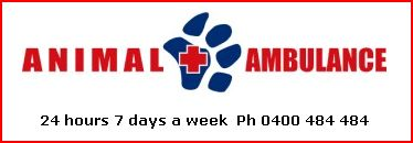Animal Ambulance Logo & Hours